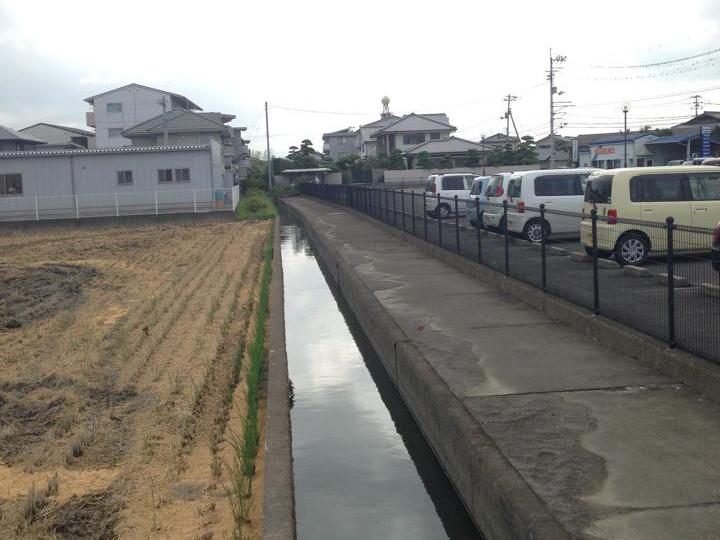 徳島四国大学付近の用水路で釣りをする