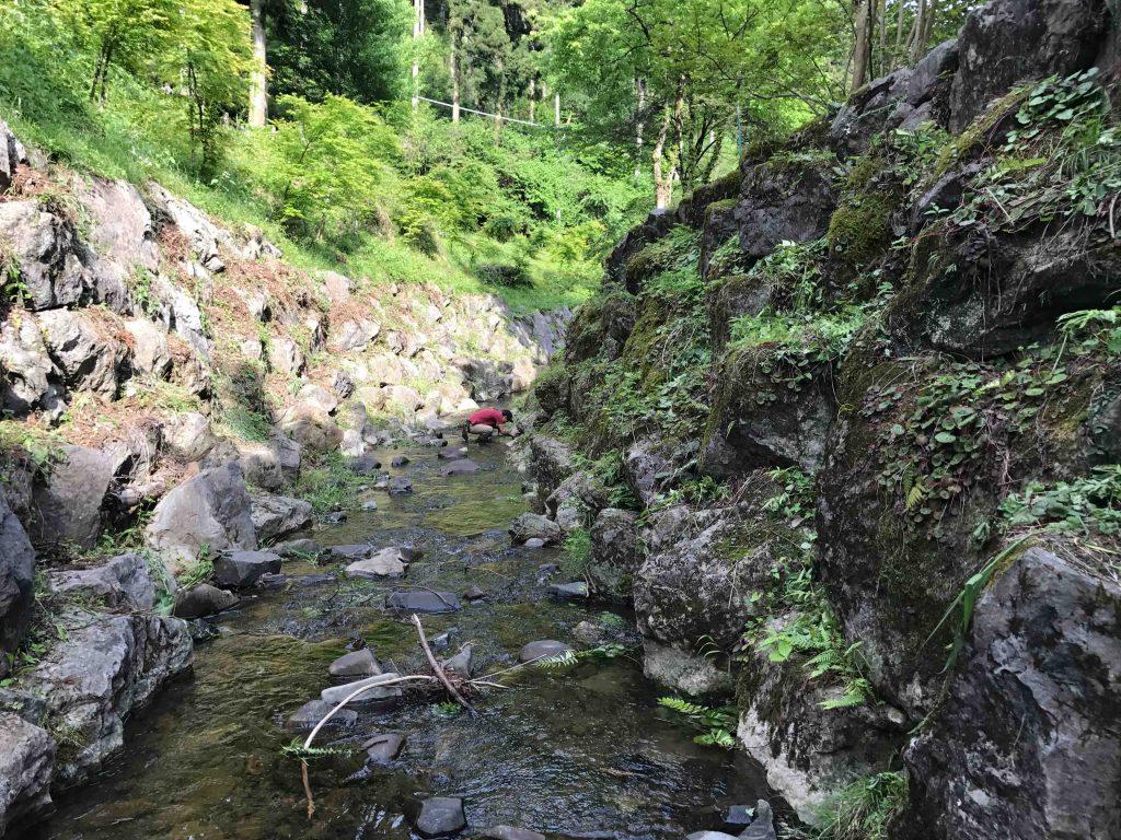 出流ふれあいの森キャンプ場の川は綺麗2
